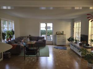 Vardagsrummet före. Soffan fick hänga med från förra hemmet där den passade perfekt. Nu skymmer den altandörren.