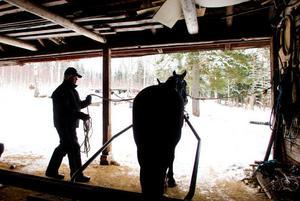 Det är intresset för hästarna och tävlingsbiten som driver. Det är en livsstil, ekonomin är inte alltid den bästa, men drömmen om de stora pengarna finns där. Nu står hoppet till Jenny R.G. som sprungit in drygt en miljon kronor. Och fortsätter hon som ifjol är de väldigt nöjda.