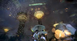 Ljus- och ljudshow i Singapores nya park.