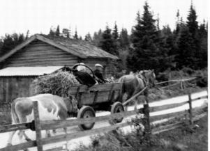 Bufärdslass. Näs Karl och Johanna med häst och ko. Foto:Privat