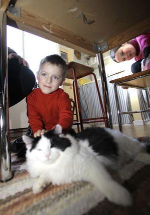 Peter Teggart har snabbt blivit kompis med djuren på gården. Smeknamn har de också fått och visst känns det helt rätt med