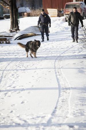 Hunden Brysk sökte efter den försvunna kvinnan efter branden. Mänskliga kvarlevor hittades i området under måndagen.