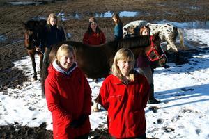 Ponnyhästar på banan. Elin Ahlinder och Maria Gradin är tävlingsansvariga för ponnydressyren. Bakom dem motionerar Karin Soron, Lovisa Gradin, Hanna Gustafsson och Natalie Bergström sina ponnyer.