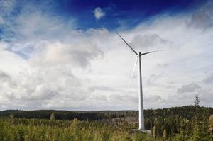 Det kan bli vindkraft på Kalkstenshöjden, öster om Borgvattnet.