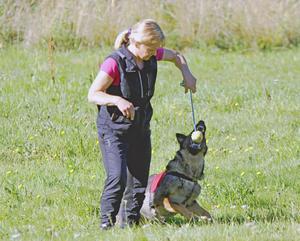 Det är viktigt att ta tillvara på glädjen hos hundarna för att lyckas bra i brukshundgrenarna. Åsa Damberg är noga med att belöna sin hund.