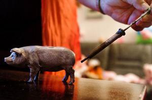 Den dyraste grisen som inte bara är en prydnad utan även en insemineringsspruta.Foto: Ulrika Andersson