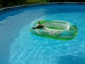 Charlie njuter av svalkan från poolen hemma hos moster Kerstin.