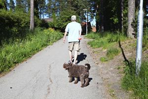 På gång- och cykelvägarna trampar många tassar varje dag. I Gävle finns nästan 7 000 hundar.