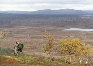 Jägare boende i Sverige ska ha förtur till fjälljakten, det hävdar landsbygdsminister Sven-Erik Bucht (S)    och Hans Unander (S)  riksdagsledamot från Malung.