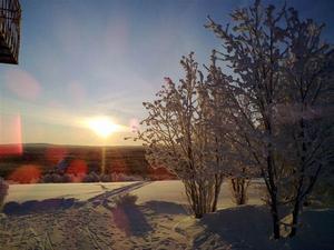 Ännu en vacker bild taget från mitt barndoms hem i Rönnöforsden 16 Januari 2010 Foto: Anna-Stina Tengström