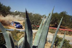 Det är knappast troligt att Patrik Sandell och Emil Axelsson kan fullfölja Portugals VM-rally. Duon, som leder PWRC-klassen totalt efter två deltävlingar, voltade av vägen i slutet av specialsträcka två.Foto: Red Bull Rally Team