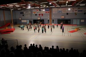 Seniorgympagruppen och gymnaster från lågstadiet inspirerade till motion.