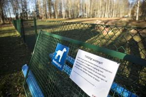 En falubo föreslår att ytterligare en hundrastgård byggs i Falun och pekar även ut platsen för den. Bilden är tagen vid en av de befintliga hundrastgårdar som redan finns i staden.