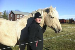 När ens fritid övergår till arbete så skaffar man sig nya fritidsintressen, nu har vi fyra hästar och här poserar Christer med favoriten Chrystal, av rasen American Curly.