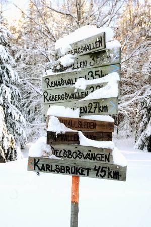 Blir det bara snö så blir det spår på Sjuvallsleden i vinter igen.