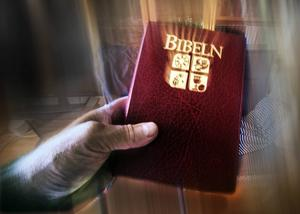 Skribenten refererar till Bibeln.