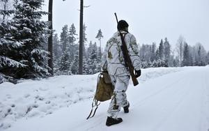 På jakt. Vi tycker inte att frågorna om jakt och stammens storlek ska avgöras i EU-domstolen. Därför tar regeringen nu ett antal steg som ska skapa förutsättningar att behålla besluten i Sverige, skriver debattörerna.foto: scanpix