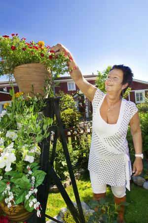 """Gröna fingrar. """"A och O är att man plockar med dem"""", säger Eva-Lena Karlsson och nyper bort några torra blad från Million bells-plantan."""