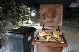 Foto: Peter Forssell. Sophämtningen blir billigare för den som sorterar sina sopor i två tunnor, den gröna för matavfall och den bruna för hushållsavfall.