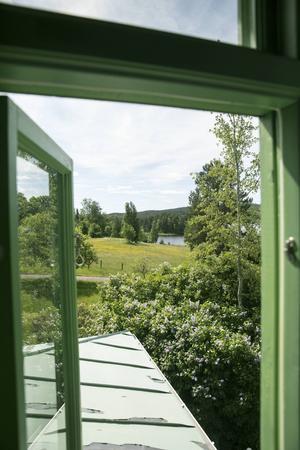 Sjöglimt och grönska - utsikten från badrummet.