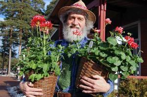 Trädgårdsmästare. Mats Asplund med två olika pelargoner, Single New Life,