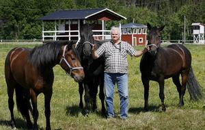 Hästar är livet för Sven-Olof Lindman. Tidigare själv travkusk men numera ordförande i Västra Ångermanlands Travsällskap och tävlingsledare på Hotingtravet.hotingtravet