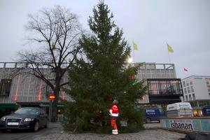 Britt-Mari Nyberg sätter upp belysningen i julgranen på Stora torget i Västerås.