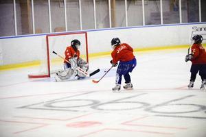 Emma Högström har spelat hockey sedan hon var fyra år och hon hade inga problem med att få in pucken i mål.