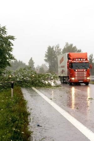 På riksväg 80 i Valbo föll också träd på körbanan.
