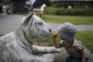 Viktor som är 2 år är väldigt nyfiken och allt ska undersökas. Bilden togs vid ett besök till Parken Zoo.