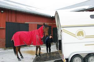 Hästar är livet för Eva Söderström. Minst tre gånger i veckan lastar hon Märtas halvbror Yngve för att åka de två milen till ridhuset.