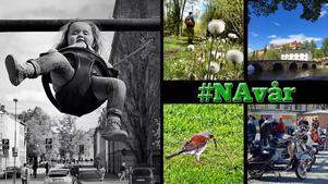 Nina Nymans gungande barn vann #NAvår. Övriga fyra bilder nådde final.