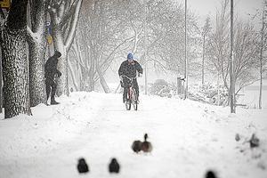 Tar man det lugnt brukar det fungera bra att cykla på vintern, menar lassE.