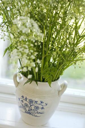 Växter och buketter skapar hemtrevnad.