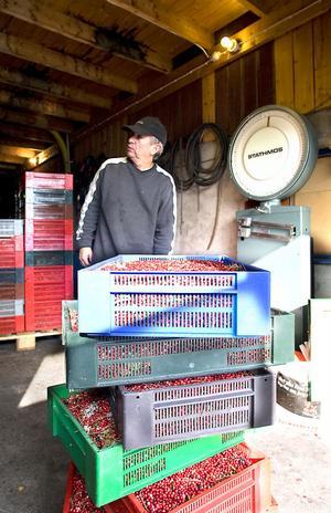 Kjell Eriksson har varit i bärbranschen hela sitt liv.