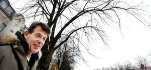 Ricky Morelli är arborist inom Gävle kommun.