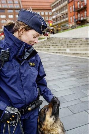 Hundarna ägs av polismyndigheten men bor hos hundföraren och lever i familjen som en vanlig hund. Myndigheten har fler hundar än förare så att de inte riskerar att bli utan. Dessa bor hos fodervärdar och hundförarna hjälper till med träningen.