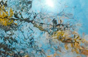 Ett av Hans Månssons fotografier av vatten i en fjällbäck.