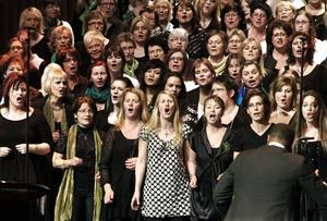 EN JÄTTEKÖR. Intresset och lusten för att sjunga gospel i Gävle håller i sig. 320 körsångare deltog under helgen i den elfte gospelfestivalen i Gävle.trivs.