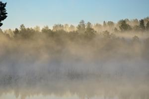 Fiske morgon vid lilla Djurlången.