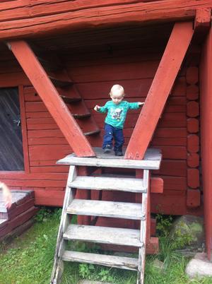Walter Brus (15 mån) hade roligt en hel eftermiddag på Vallby friluftsmuseum. Han hittade en lekkamrat vid namn Alma. De hade en härlig närkontakt tills Alma och hennes pappa gick hem. Här roar sig  Walter med att försöka gå i trappor som nästan ser ut som stegar.......