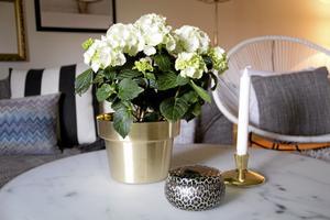 favorit. Skultuna är en favorit just nu, både krukan och ljusstaken kommer därifrån. Vardagsrumsbordets skiva är marmormönstrad och vändbar, på andra sidan är den vit.