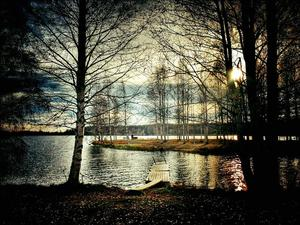 Oktober:  Löven har fallit i Krokomsviken.