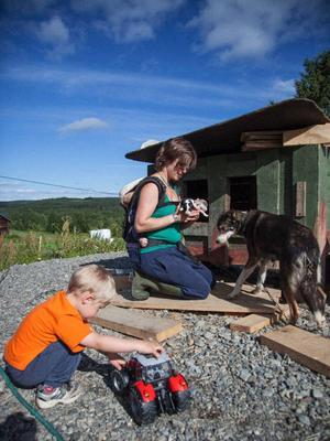 27 draghundar finns på gården. För några dagar sedan blev det tillökning då fem hundvalpar föddes.