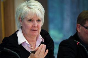 Landstingsrådet Ingalill Persson (S) vill ha regler för bland annat politikernas informationsinhämtning. Det gillar inte oppositionen.