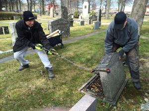 Tony Lundqvist och Tommy Molin, från företaget Dacaga, säkerhetskontrollerar alla gravstenar i Hallstahammar-Kolbäck församling. Här är det en sten på Kolbäcks kyrkogård som inte håller måttet.
