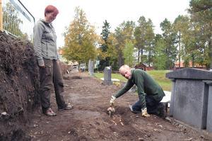 När utgrävningen började anade ingen hur mycket de skulle hitta. Men nu menar arkeologerna att de kommit till botten av graven. Bilden är från början av september när utgrävningen nyss hade påbörjats.
