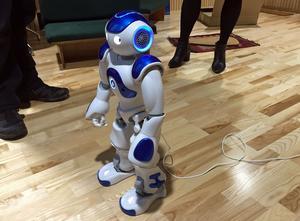 Den slovenske koreografen Dejan Srhoj har skapat en möblerad ungkarlslya åt den här Nano-roboten.