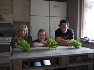 Eleverna Matilda Grip, Emilia Yngström och Wiliam Falk vid matbordet de har gjort av lastpallar. Alla nya möbler går att se på Storsjögymnasiets Facebooksida.