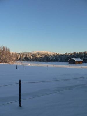 Bilden är tagen utöver våran täckt, i bakgrunden ser man Rodovålen och vindkraftverken. Foto: Hanna Westfält